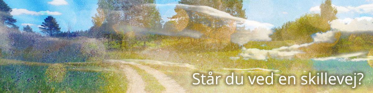 staar-du-ved-en-skillevej_tekst